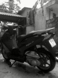 hamtruong87