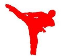 karate_hn