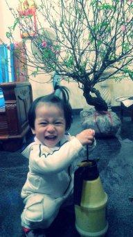 Dongph