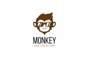 MonkeyKids