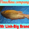 vinachina